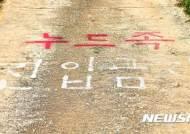 제천 '누드펜션' 운영자 1심서 무죄 판결