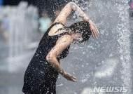 """""""세계 각지 7월 이상기후 내습...미국 서해안 폭염·일본 폭우 등"""" WMO"""