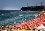 전국해수욕장 물놀이 안전사고 예방 캠페인