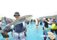 '파도를 넘어 희망의 바다로' 2018 울산조선해양축제 팡파르