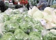 농산물 물가 내려 6월 생산자물가지수 보합세