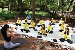 유한킴벌리 그린캠프, '숲속 요가로 힐링해요'