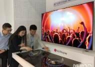 LG디스플레이, 상반기 대형 OLED 패널 판매 급증…작년比 2배