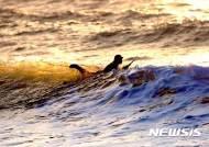 '만리포 서핑 명소 만들자'...태안군 서핑스팟 조성 시동