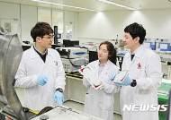 韓 전기차 배터리 업체들, 2020년 기다리며 中시장 총력전