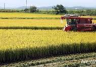 [종합]쌀 생산조정제 효과 없나…벼 재배면적 고작 2.2%↓