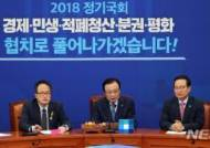 민주당, 지명직 최고위원에 이수진·이형석 임명키로