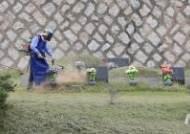추석 앞두고 예초기로 벌초하는 공원 관리원들