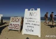 미 동부 상어공격에 2명 사상..휴대전화 신고 불통 논란