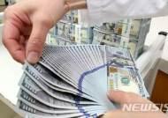달러·위안화 관심 높아지자…달러보험·차이나보험 관심 '쑥쑥'