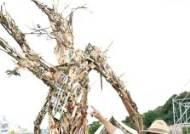 [뉴시스 앵글]연리지로 살아난 폐목재…청주직지코리아 조형물