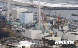 서울서 유통 버섯·블루베리·견과·고사리서 방사능 검출