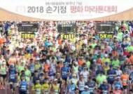 올림픽 30주년 기념 손기정 평화 마라톤대회