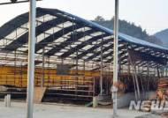 2700여 축산농가, 무허가축사 적법화 기회 상실…무더기 강제폐업