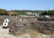 공원에 방치된 미로 찾기 구조물