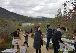 [군포소식] 재궁동 주민과 함께 농촌일손돕기 등