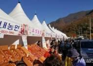 '밀양 얼음골 사과축제' 11월3~4일 열려…다양한 참여이벤트 등도 마련