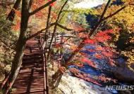 지리산국립공원 대원사 계곡, 생태탐방로 15일 개통