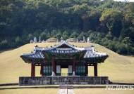 동구릉 숭릉 정자각 흰개미 피해, 임시 보호조치