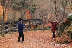 전북, 한낮 9~11도 '흐림'…종일 쌀쌀한 휴일