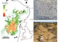브라질 북동부에서 最古 4000년전 흰개미집 2억개 발견