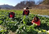 농촌봉사활동하는 한국당 대전시당