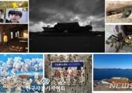 """이달의 보도사진 시사스토리, """"지옥이 여기구나"""" 세월호 미수습자 수색 종료"""