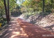 '영광 물무산 행복숲' 질퍽질퍽 맨발 황톳길