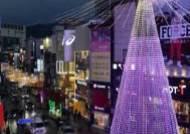 부산 크리스마스 트리문화축제 12월 1일 개막