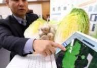 농진청, 배추·마늘 생산량 예측 기술 개발