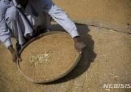 인류 먹고 살 식량 공급, 점점 힘들어진다
