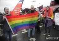 """러시아 인권 운동가들 """"LGBT 집회 자유 달라!"""""""