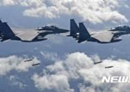 """軍 """"비질런트 에이스 유예 한국 공군 단독 훈련"""""""