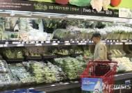 11월 광주·전남 소비자물가지수 전년대비 상승