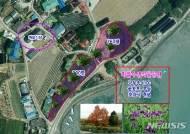 신안군 반월·박지도 '보라색 섬' 조성…가로수 길·습지공원 등