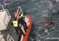 제주 비양도 해상서 물질하던 70대 해녀 숨져
