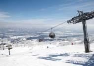 스키협회, 3월 일본에서 알파인 국가대표 전지훈련