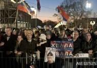 푸틴 대통령 열렬히 환영하는 세르비아인들