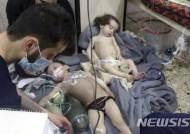 EU, 러시아·시리아인 9명 화학무기사용 관련 경제제재 부과·