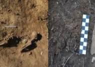 화살머리 고지서 발견된 '완전 유해' 중국군으로 추정