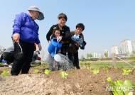 '어린이들에게 도시농업 체험 학습장 체험 기회를'