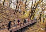 교직원 산림치유프로그램으로 스트레스 '훌훌'