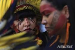 브라질 토착민, 정부 주도 농경지 개간 반대 시위