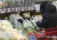 연초 충북 소비자물가 '껑충'…신선식품 지갑 부담