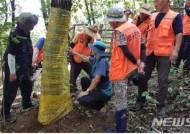 퇴직공무원 활용한 '산림병해충 방제컨설팅' 계속사업으로 선정