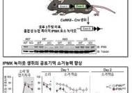 연구재단과 KAIST 공동연구 통해 공포기억 소거 조절 '효소' 발견