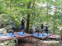 """경북도교육청, """"산림자원 활용해 학교폭력 해결할 것"""""""