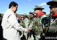 마두로 대통령, 대규모 군사훈련 참관