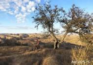 미 국유지· 국립공원 대규모 확대· 보존법안 상원 통과