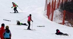 '정지' 스키어들 충돌 사고